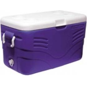 PORTALBE COOLBOX 48 LT WITH  HANDLES